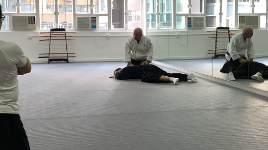 Dermot Moran Sensei demo on Aikido